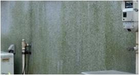 塗装の塗り替え状態の目安 外壁<モルタル吹き付け面>