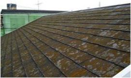 塗装の塗り替え状態の目安 屋根<スレート瓦>